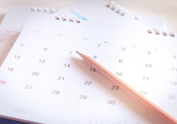 Actividades del mes enero 2019